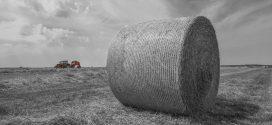 La venta de #tractores mejora respecto al año anterior en la provincia de León
