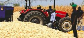 Case IH dona maquinaria para fortalecer la sostenibilidad de la agricultura de Ghana