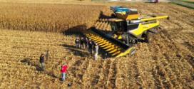 Dos nuevos récords mundiales de cosecha de maíz con CLAAS